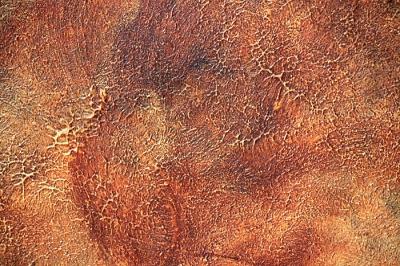 "Roxidan - декоративное покрытие ""под ржавый металл"""
