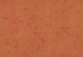 "Perlescente Luxory - декоративная краска ""под жемчужный перламутр"""